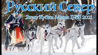 Ездовой спорт. Этап Кубка Мира IFSS Русский Север 2021/ IFSS Russian North World Cup Stage 2021.