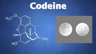 Codeine: What You Need To Know