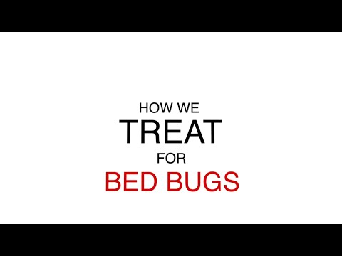 bed-bug-extermination-process-–-how-we-treat
