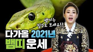 뱀띠라면 꼭 봐야하는 뱀띠 2021년 신축년 신년운세!! 20대 30대 40대 50대 60대 내년에는 합의를…
