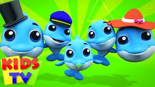Dolphin Finger Family Baby Dolphin Song Nursery Rhymes Kids Songs kids tv S03 EP81