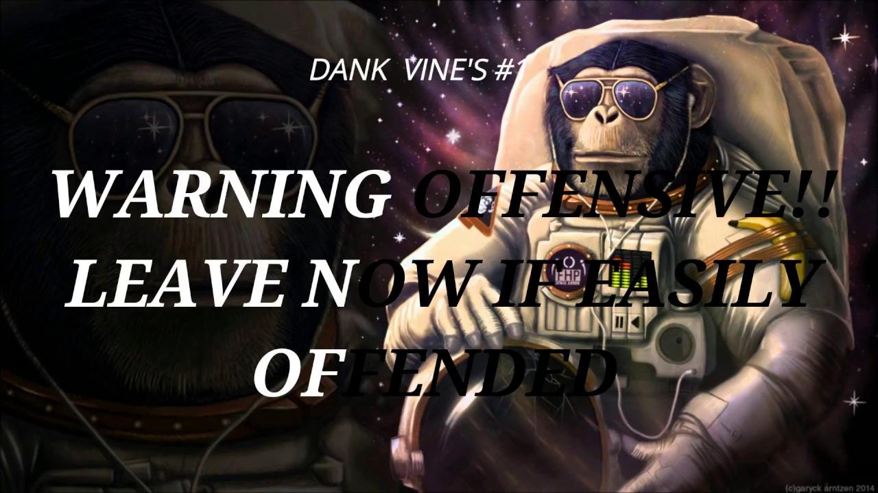 DANK VINE'S #1 OFFENSIVE