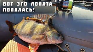 Весенний Трофей Крупный Окунь на Джиг Рыбалка с лодки на спиннинг Апрель 2021 Тольятти