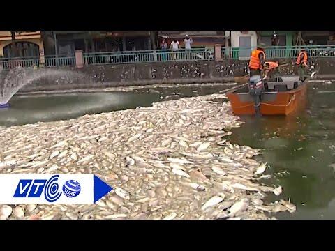 Môi trường Việt 'hấp hối' vì ô nhiễm | VTC