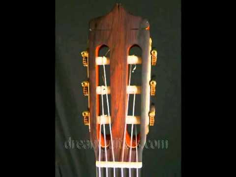 Traphagen Flamenco Spanish Cypress/Swiss at Dream Guitars