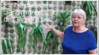Minha parede e Jardim Vertical de Garrafa pet | Vó Neide e suas pets