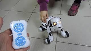Собака робот CTW Digital Dog с дистанционным управлением