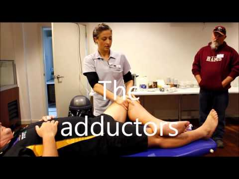 How to do a sports massage; A trainers workshop by myPhysioS