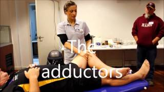 How to do a sports massage; A trainers workshop by myPhysioSA