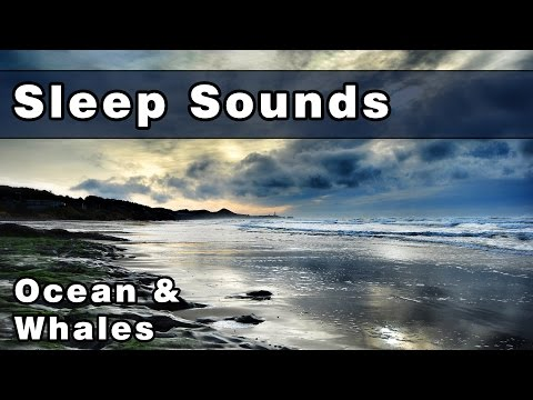 Whale Sounds & Ocean Waves | Soothing Sleep Sounds | White Noise Sound | Peaceful Whale Song