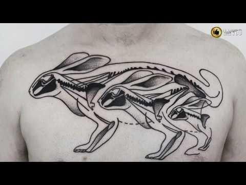 Best Rabbit Tattoo Design Idea