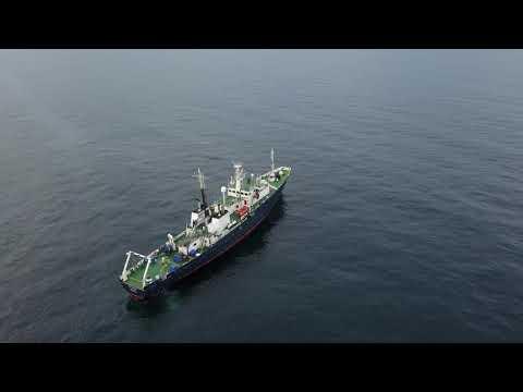 Survey Ship Vigilant in Moray Firth, Scotland. Aerial video.