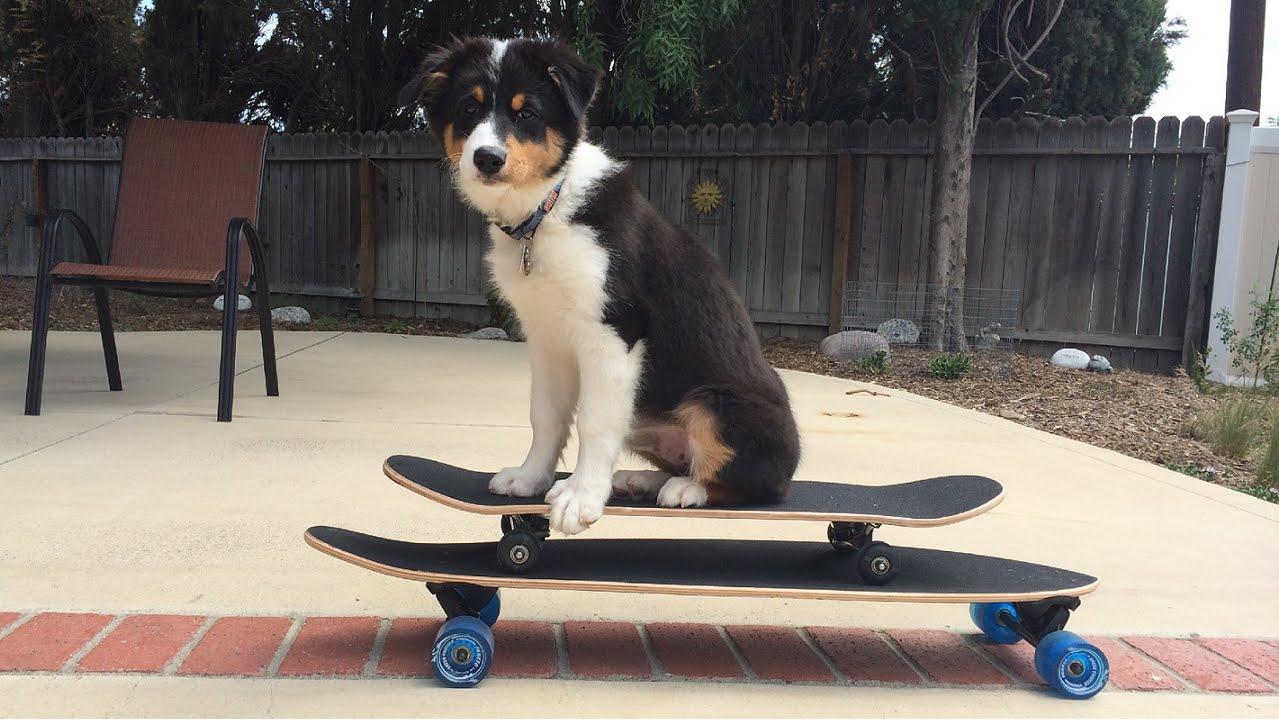 Riley ride