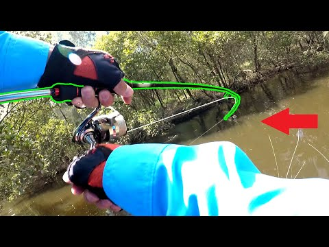 Quickfire BREAM And Something Unusual! - Georges River Fishing