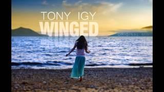 Tony Igy - Winged 2014 thumbnail