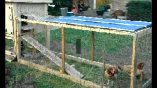 Cheap Hen Coops For Sale | Ideas For Hen Coops | Designs & Plans For Easy To Build Hen Coops
