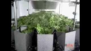 Мультиголовочный дозатор для овощей