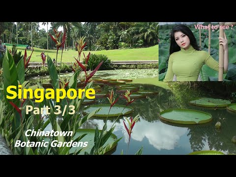 WHAT TO SEE in Singapore - Part 3 / 3