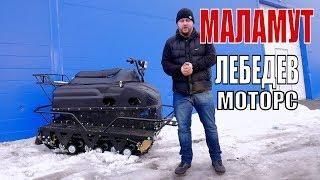 Мини вездеход Маламут от Лебедев Моторс.