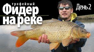 Фидерная рыбалка на реке день 2 ловля карпа 2021