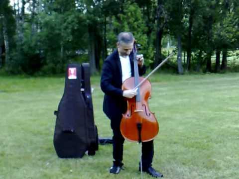 cello in a park in Finland - YouTube