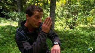 Pathfinding in the Mountains | Bear Grylls: Escape from Hell