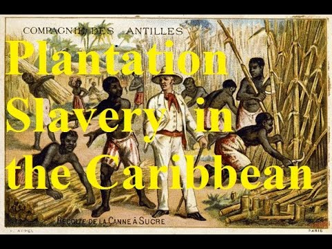 3.2 When sugar ruled the world: Plantation slavery in the 18th c. Caribbean