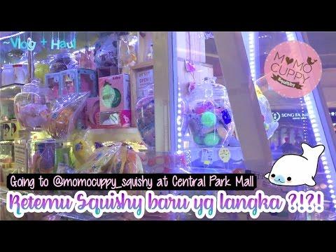 Ketemu Squishy Baru yg Langka ?!?! Going to @momocuppy_squishy at Central Park Mall | Friendship DIY