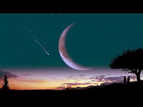 nvrmore  -  falling stars