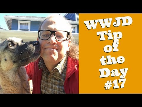 What Would Jeff Do? Dog Training Tip of the Day #17