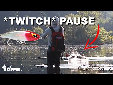 3 Beginner Lure Fishing Mistakes + How To Fix Them!