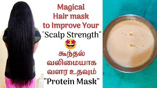 Homemade Protein Hair Mask for Scalp Strengthening in Tamil Nourishes Your Hair VINI S HAIR CARE