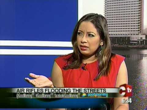 Security Expert: Air Rifles Should Remain Legal