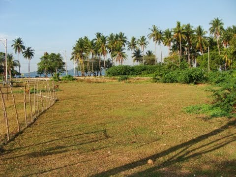Philippine Beach Lot For Sale!