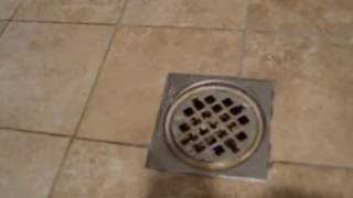 Sewer smell in the shower