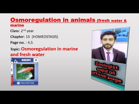 Osmoregulation In Animals ,marine And Fresh Water-2nd Year Biology Book 2