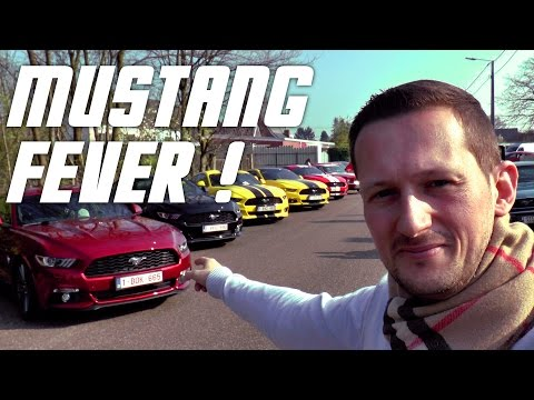 Mustang FEVER ! GT 5.0 V8, Fastback 67, Shelby GT500 et Eleanor !