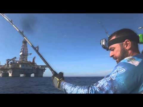 PLATAFORMA - Pescaria Em Alto Mar - CAVALAS - Equipe Beluga - Rato&Cia