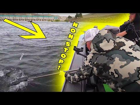 Non STOP SALMON FISHING Action.