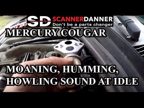 Mercury cougar moaning humming howling sound at idle bad iac mercury cougar moaning humming howling sound at idle bad iac valve fandeluxe Image collections