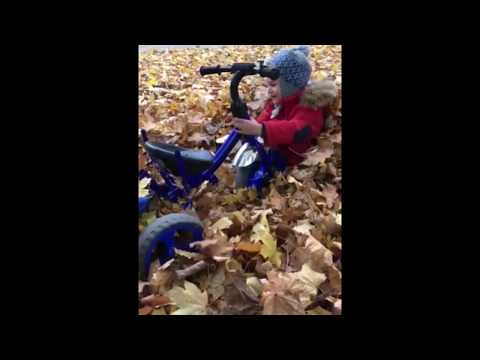 Как выехать, если ты забуксовал! Или невероятные приключения Льва и велосипеда в листьях!!!