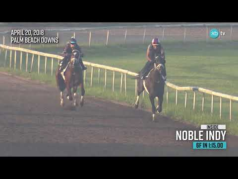 2019 Louisiana Derby winner Noble Indy works at Palm Beach Downs ahead of the Kentucky Derby