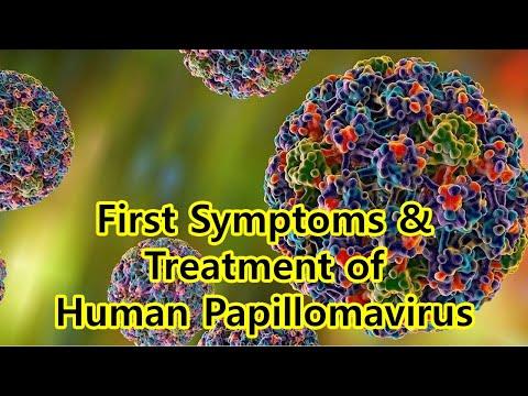 Poliklinika Harni - HPV infekcija i prvi spolni odnos