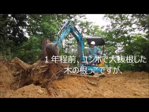 妖怪サイズの木の根っこをチェーンブロックで大移動