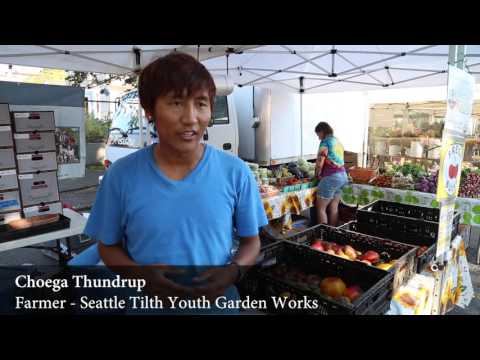 Shopping with EBT, SNAP Incentives, and Nutrition Vouchers at WA Farmers Markets
