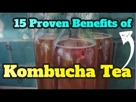 15 Incredible Health Benefits of Kombucha Tea