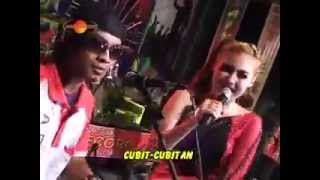 The Rosta Vol 7 - Cubit  Cubitan - Nella Kharisma