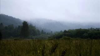 Klada - Z serii Leśnych zwierząt: Straszny las