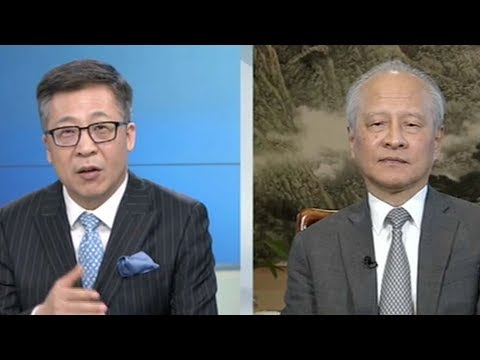 Cui Tiankai: Nobody can stop China's reunification