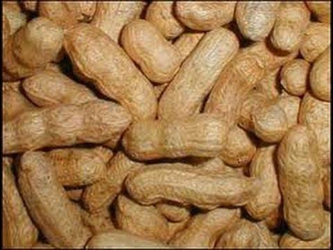 Beneficios y Propiedades de los Cacahuetes para la Salud